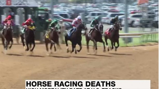 horses racing at the Kentucky Derby