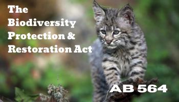 AB 564 (Gonzalez) Protection for California's Biodiversity