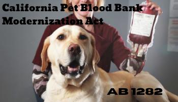 AB 1282 (Wilk) California Pet Blood Bank Modernization Act