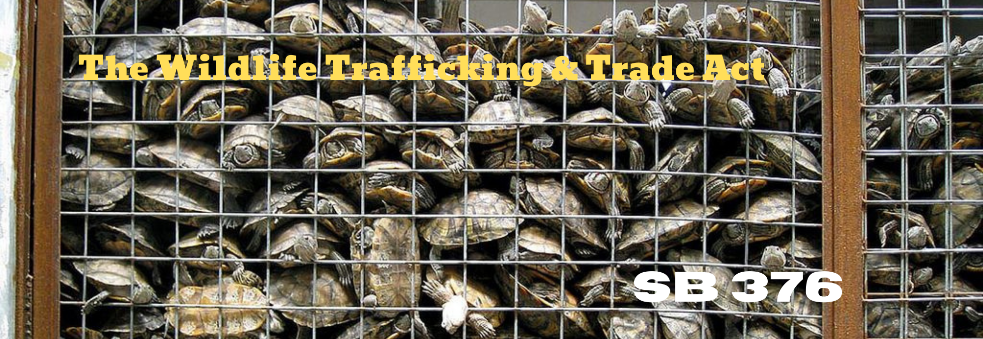 Wildlife Trafficking Trade Act