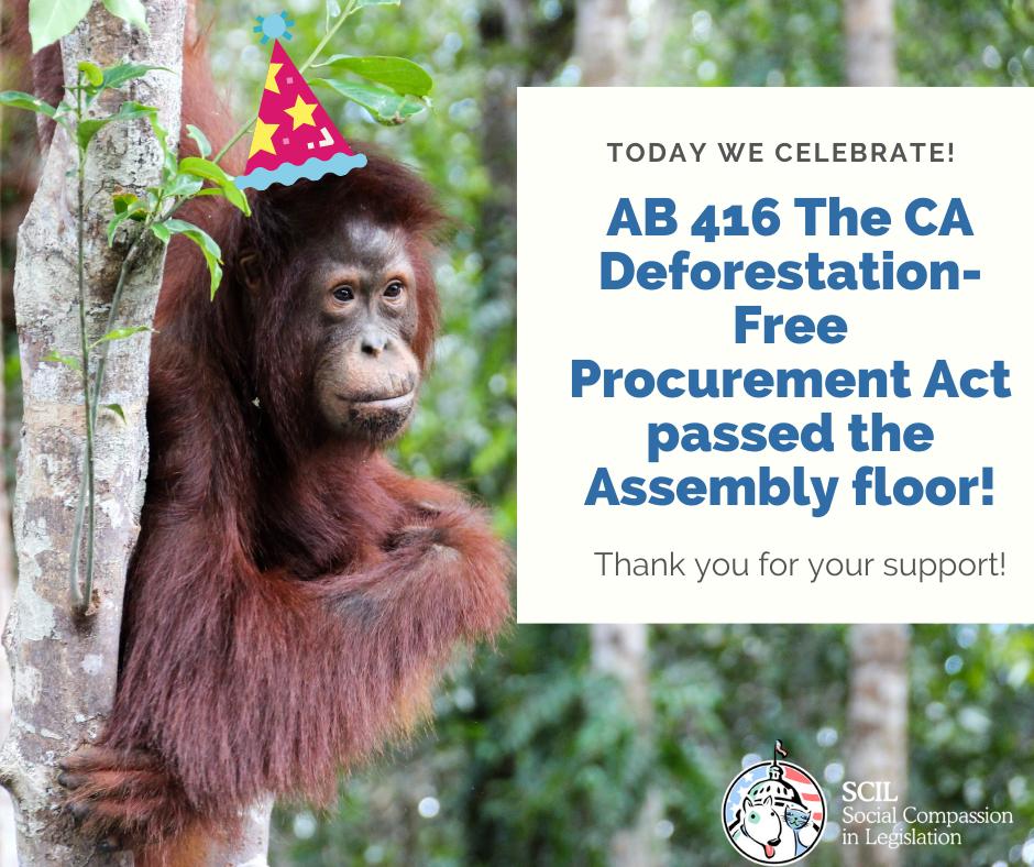 Deforestation Act Passes