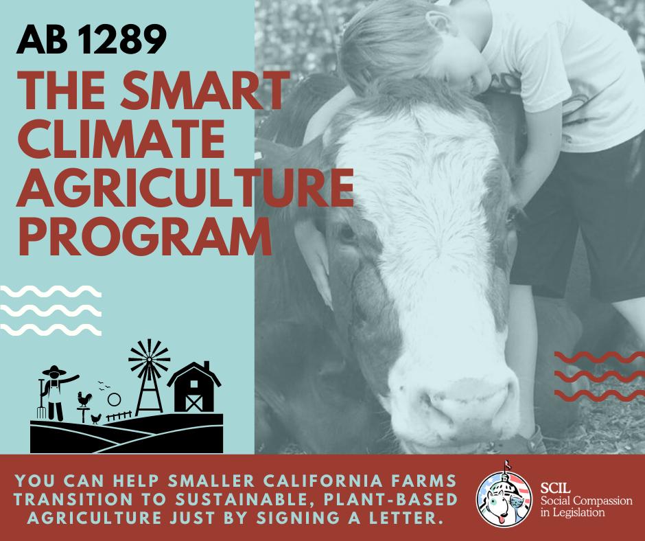 Smart Climate Agriculture Program