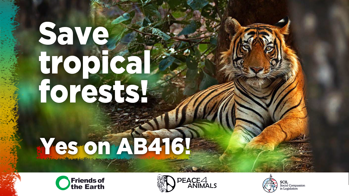Save Tropical Forests